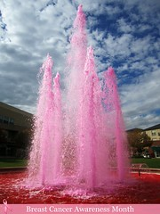 pink water in fountain for breast cancer awareness month by f l a m i n g o