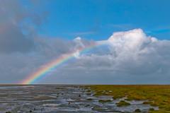 一道彩虹跨過德國瓦登海一處鹽沼的上方。(Peter Femto/攝影)