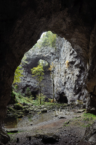 bridge nature water rock creek river naturalbridge slovenia valley gorge cave karst hugin rakovškocjan enfuse