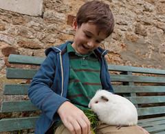 Levi Feeds the Guinea Pig - Photo of Nécy