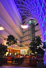 Lobby Marriott Hotel