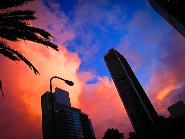 Los Angeles - November 2011