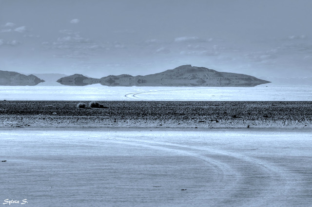 The Great Salt Lake Desert