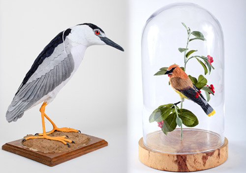 vegan-taxidermy8