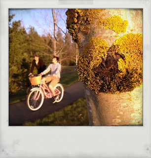 From behind the lichen covered tree, I spy a boy on a pink bike