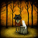Forever My Fellow by andy kehoe