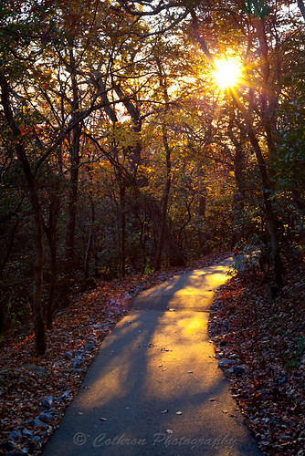 autumn usa mountain mountains fall nature georgia outdoor path trail walkway hiawassee brasstownbald townscounty highestpointingeorgia johncothron cothronphotography 4784ft