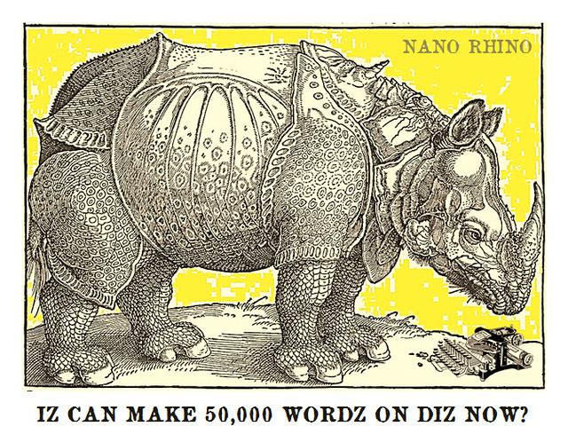 Dürer_NanoRhino_Day_1