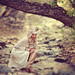 By the brook by enchantedimages2003