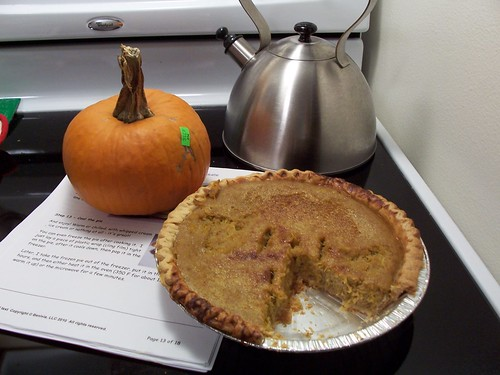 Pumpkin pie from scratch by fiberbrarian