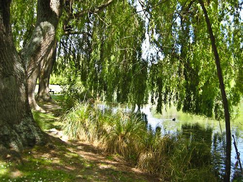 The Groynes Reserve