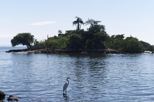 Little Island With Egret