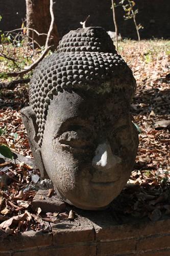20120121_2291_Budhha-head