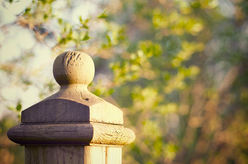 Sunlit fence post.