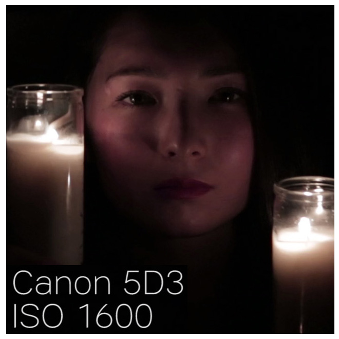 canon5d3_iso1600_100percentcrop