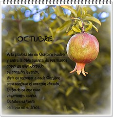 Llegó octubre y con él regresé también yo.../October came and with it I also went back...
