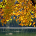 Fall at Lake Hintersee by alpenbild.de