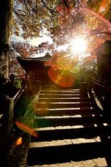 Zigen-dou (慈眼堂) ~ Kitain Temple (喜多院) ~