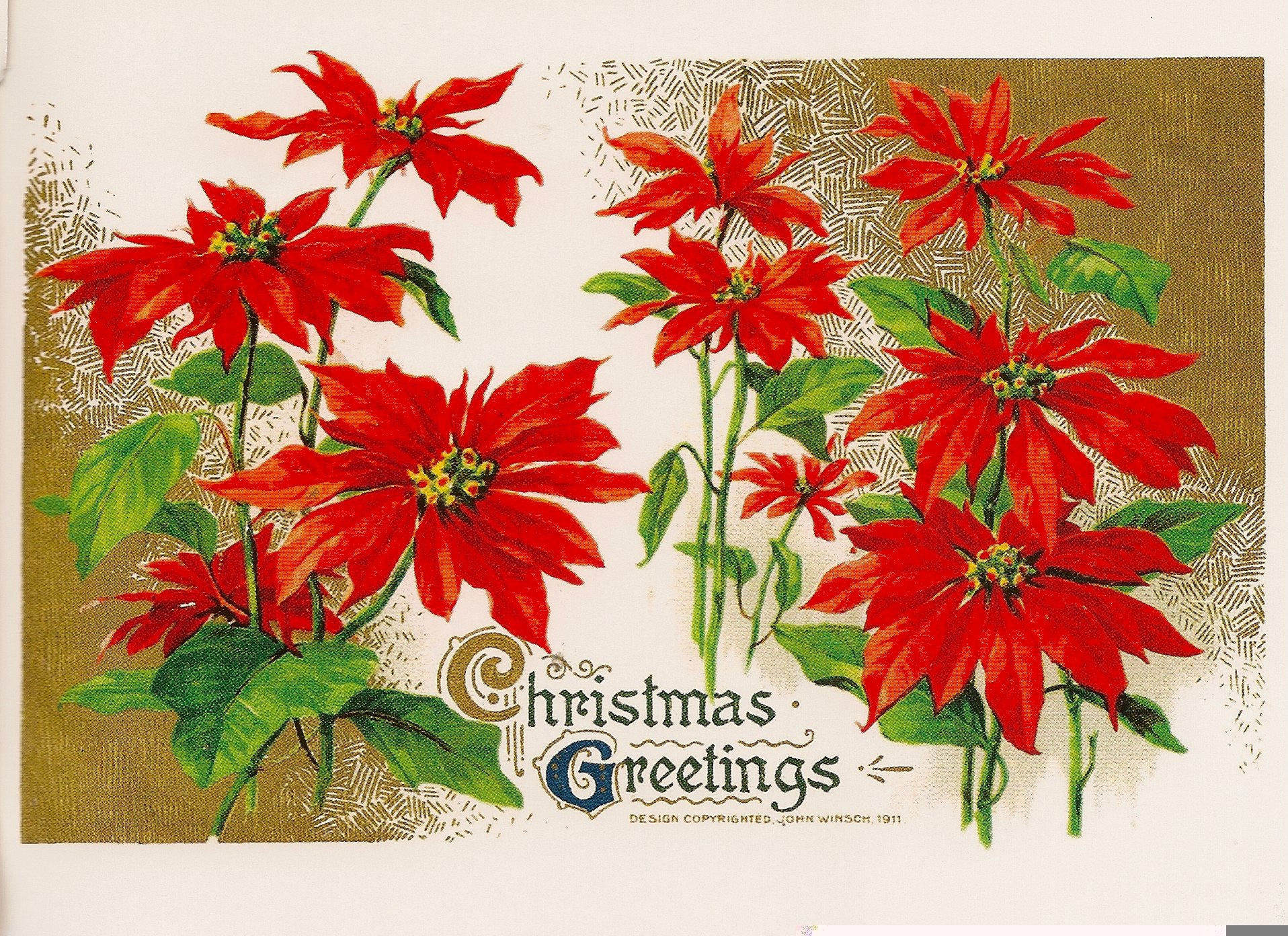 Christmas Greetings Reproduction Postcard