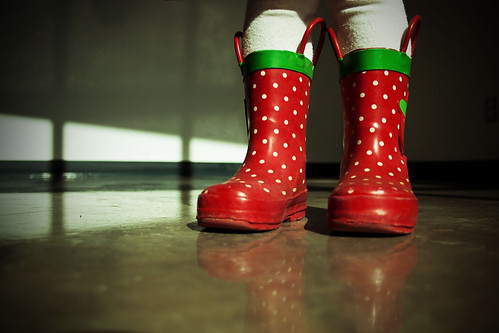 The Polka Dot Boots