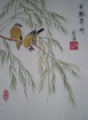 黃鸝翠柳  The Oriole and the Willow