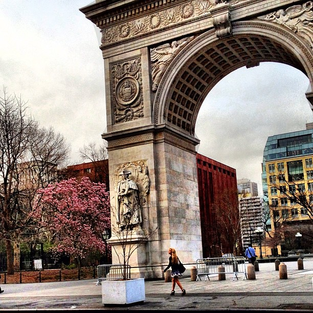 Spring in Washington Square Park this morning #walkingtoworktoday